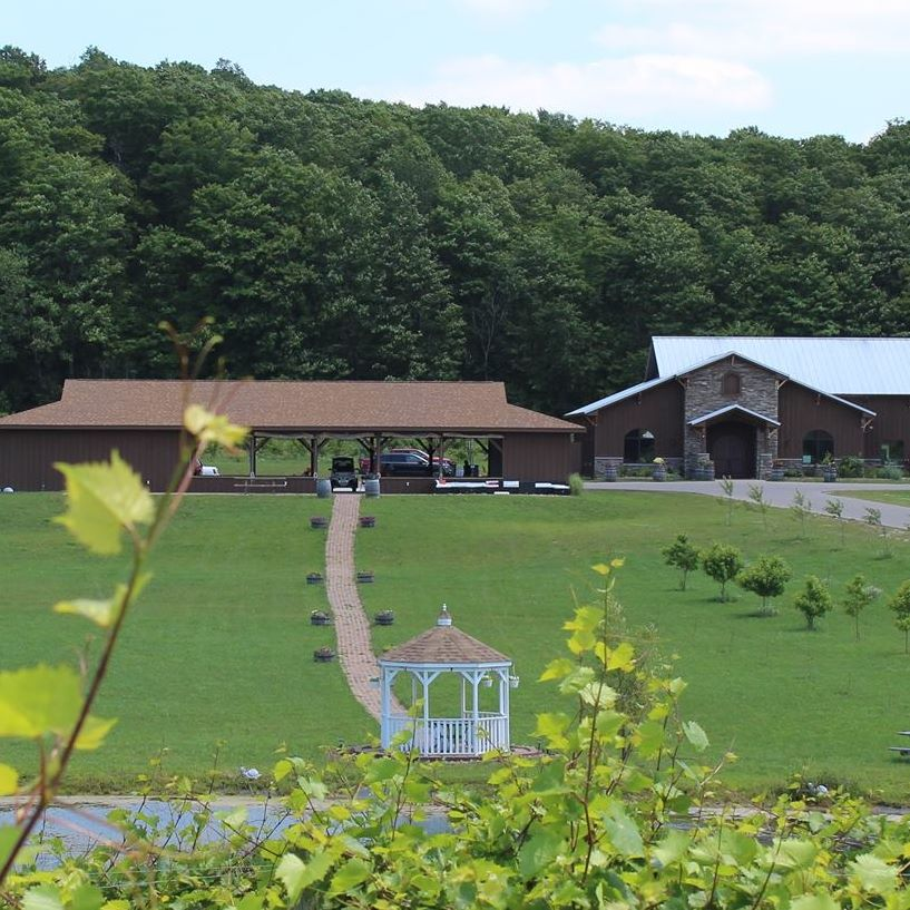 mackinaw trail winery and brewery wines 3