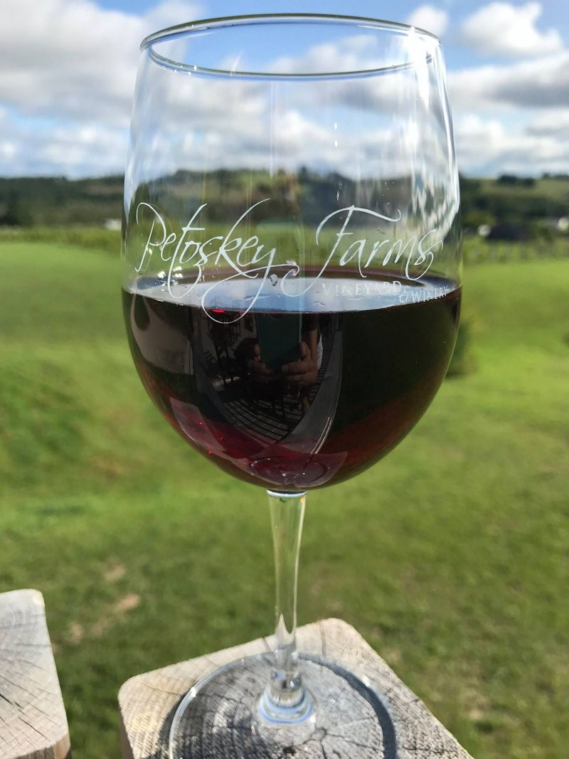 petoskey farms winery 9