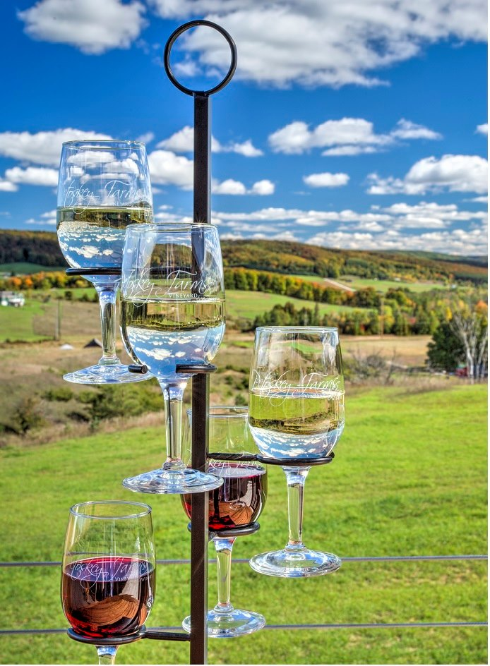 petoskey farms winery wine flight