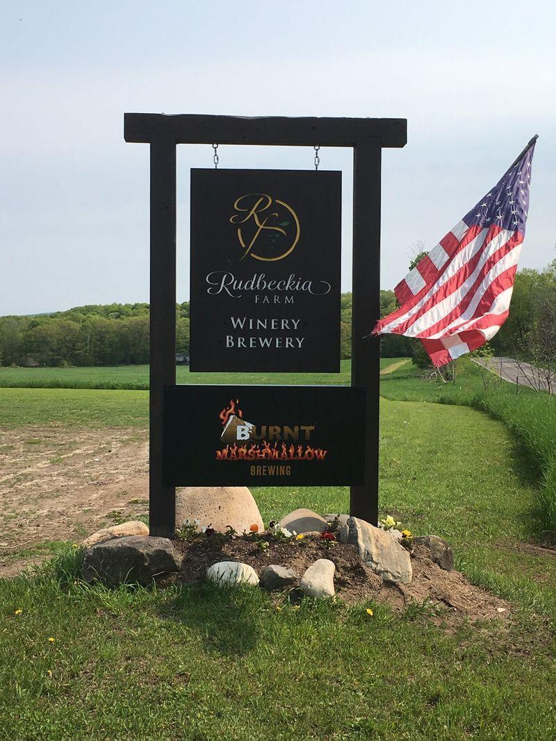 rudbeckia winery 11